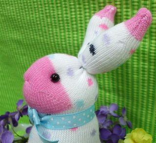 Bunny Face Profile_Sue Culotti